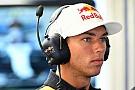Colpo di scena Toro Rosso: Kvyat appiedato, corre Gasly in Malesia!