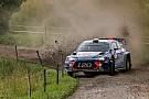 WRC Невилль и Пэддон принесли Hyundai дубль в Польше