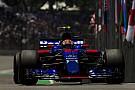 Officiel - Gasly et Hartley titulaires chez Toro Rosso en 2018