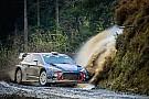 WRC Nog altijd onzekerheid over line-up Hyundai in 2018