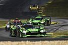 IMSA IMSA стане родзинкою нової гри Forza Motorsport