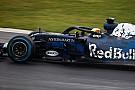 Red Bull op schema met RB14 ondanks crash Ricciardo
