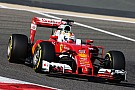 Second row for the Scuderia Ferrari on qualifying for the Bahrain GP