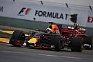 【F1】苦しむレッドブル。リカルド「効果的な対処法はまだない」
