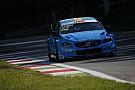 WTCC Monza WTCC: Bjork claims Volvo's first pole
