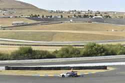 Pirelli World Challenge Grand Prix of Sonoma Sonoma Raceway, Sonoma, CA USA #43 RealTime Racing Acura NSX GT3: Ryan Eversley