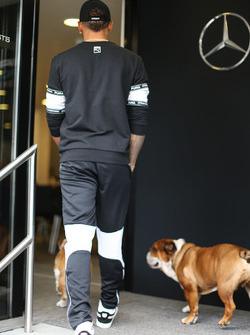 Lewis Hamilton, Mercedes AMG F1, mit seinen Hunden Coco und Roscoe