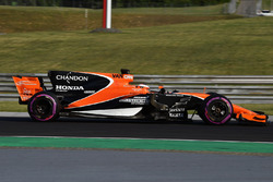 Stoffel Vandoorne, McLaren MCL3