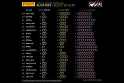 Neumáticos seleccionados por piloto