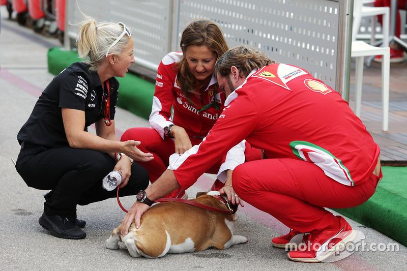 Uno de perros de Lewis Hamilton, Mercedes AMG F1 con Gino Rosato, Ferrari y Stefania Bocchi, oficial de prensa de Ferrari
