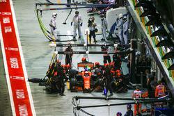 Stoffel Vandoorne, McLaren MCL32, fa un pit stop