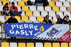 Fans de Pierre Gasly, Scuderia Toro Rosso
