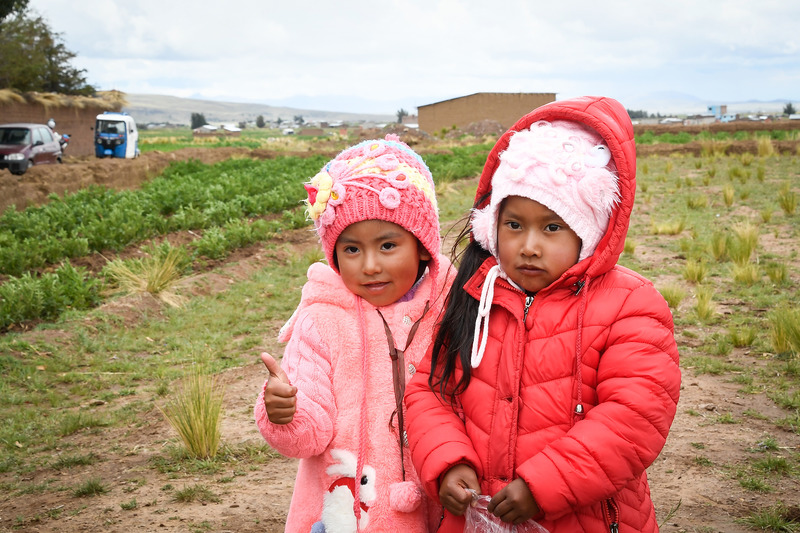 Перуанські уболівальниці