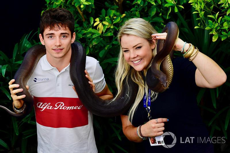 Charles Leclerc, Sauber bir yılan ile