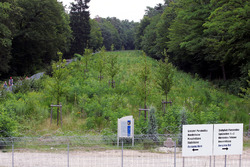 The growing trees that cover the old circuit. Note the statue to Jim Clark, who died at Hockenheim in 1968. It has been moved from its previous location on the circuit earlier in the year
