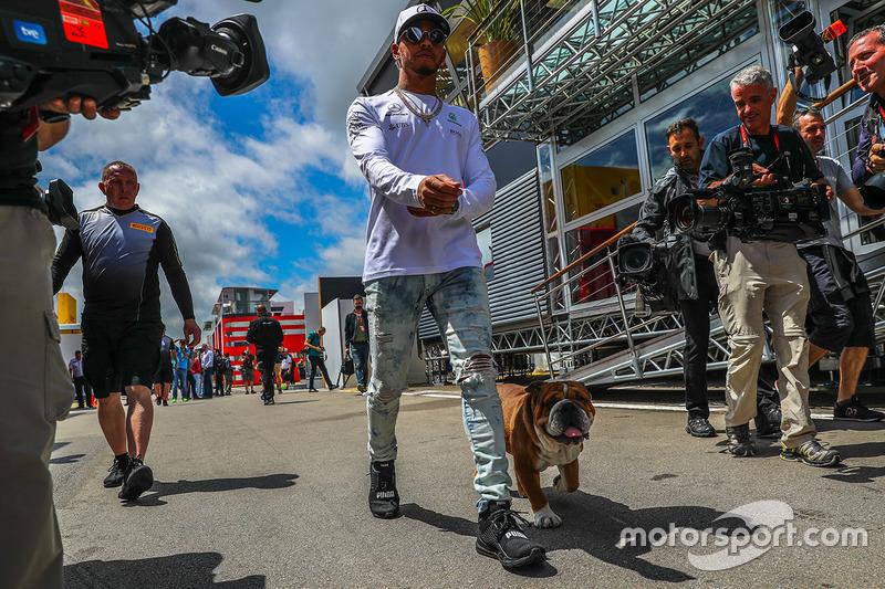 Lewis Hamilton, Mercedes AMG F1 y su perro Roscoe