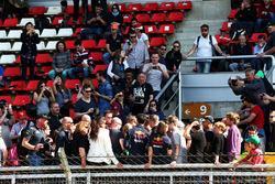 Автограф-сессия: Даниэль Риккардо, Red Bull Racing