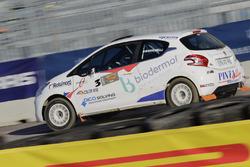 Dario Baruchelli, Peugeot 208 R2B