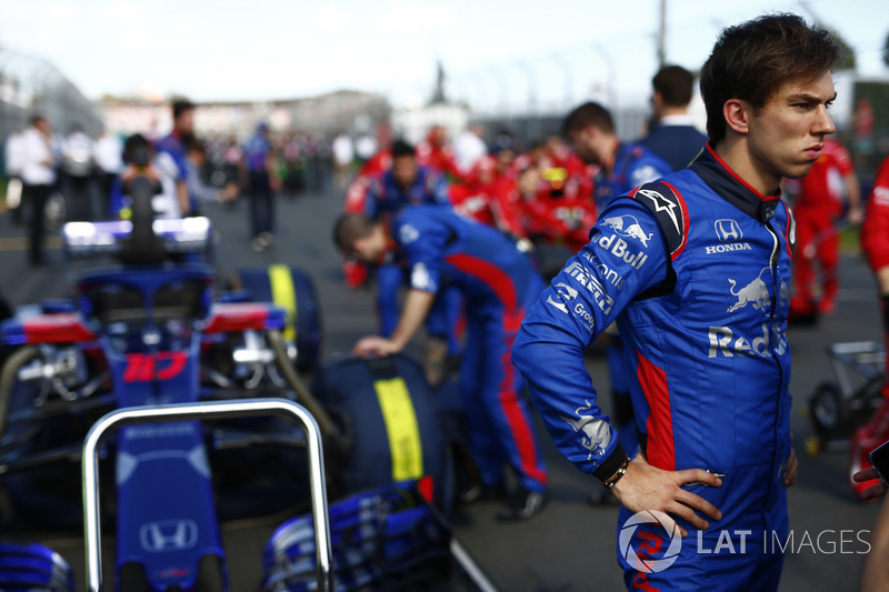 Pierre Gasly, Toro Rosso, on the grid