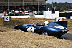 Quirina Louwmans Jaguar D-Type