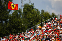 Support for Ferrari from the fans