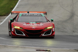 #86 Michael Shank Racing Acura NSX: Освальдо Негрі мл., Джефф Сігал