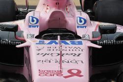 Sahara Force India VJM10 nose