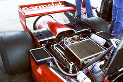 The rear end of Niki Lauda's Brabham BT46B Alfa Romeo fan car.