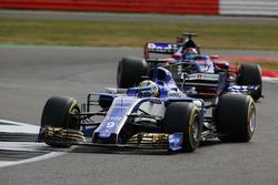 Marcus Ericsson, Sauber C36, Daniil Kvyat, Scuderia Toro Rosso STR12