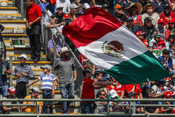 Fan with Mexican flag in the grandstand