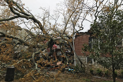 The Brady home in Atlanta, Georgia, after a tree fell on it while they were watching the Australian GP