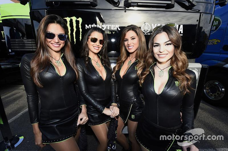 Grid girls Monster energy