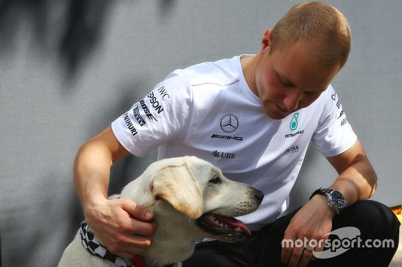 Valtteri Bottas, Mercedes AMG F1, mit Hund