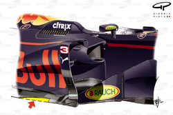 Red Bull Racing RB13 cut