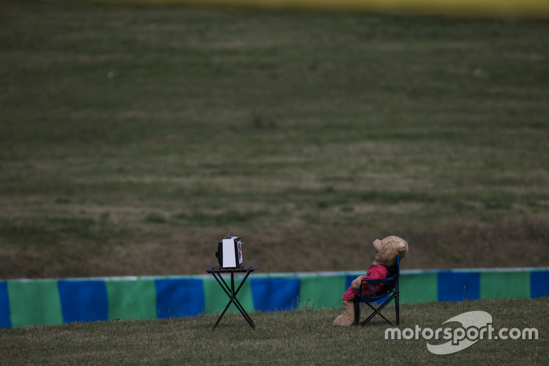 A teddy bear watch TV, next to the track