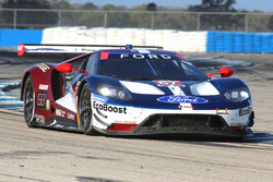 #67 Chip Ganassi Racing Ford GT