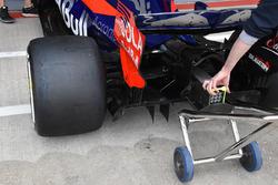 Toro Rosso STR12: il Monkey seat più grande