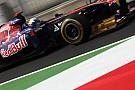 Toro Rosso Singapore GP Friday practice report