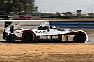 Muscle Milk Pickett Racing adds Hamilton for Laguna Seca