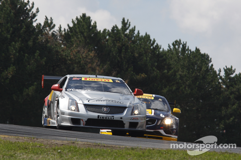 Points leaders O'Connell, Baldwin take GT/GTS poles at Sonoma