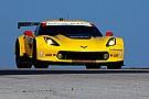 Una Corvette al via in classe GTE-Pro ad Austin