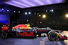 图集:红牛F1全新战袍亮相