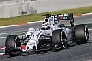 Williams: Alex Lynn confermato come Development Driver