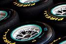 Pirelli son testler için de la Rosa'yı istiyor