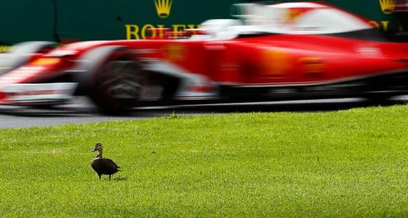 Avustralya GP: Canlı Yayın