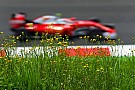Ferrari, ese objeto de deseo