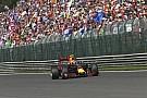 Red Bull: Verstappen bebizonyította, a versenyzők a hősök az F1-ben