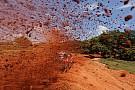 Dónde y cómo seguir el Dakar 2017