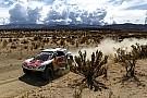 Sebastien Loeb: Dank besserer Navigation zum 1. Dakar-Sieg?
