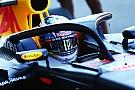 FIA pressiona e F1 adota Halo para temporada 2018